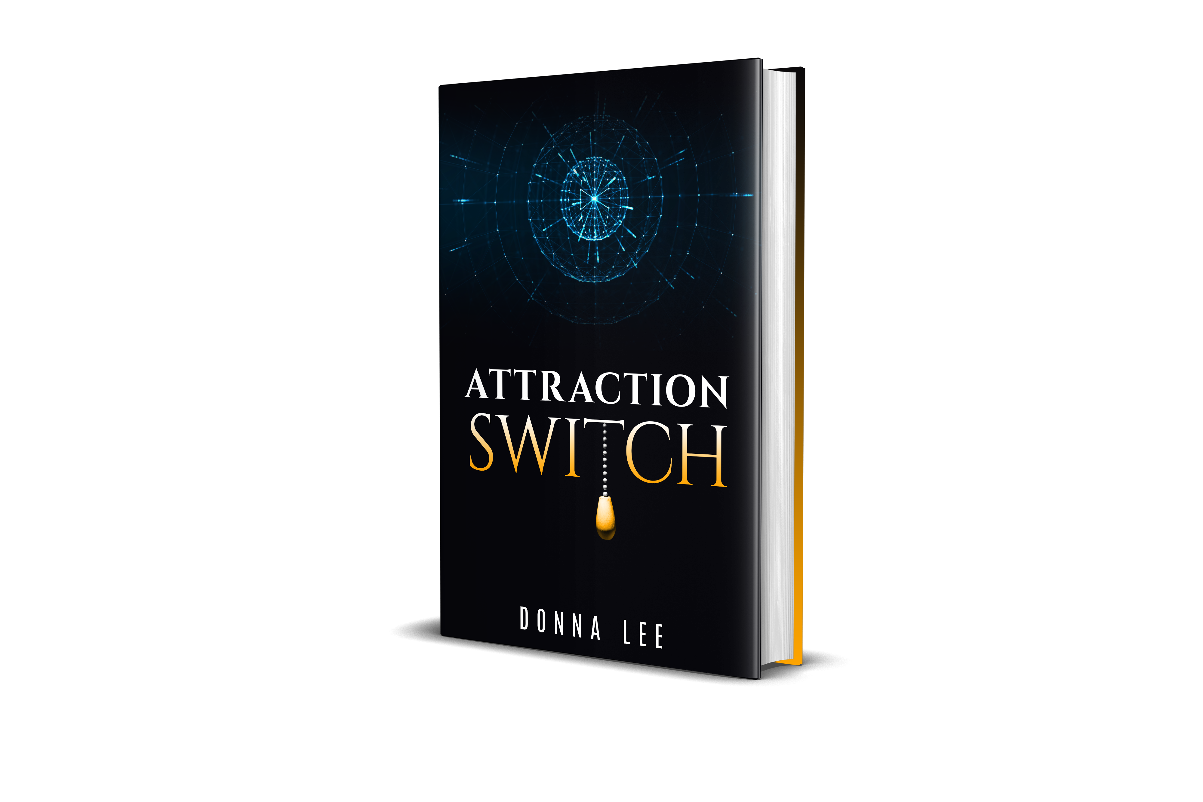 The Attraction Switch - By Donna Lee